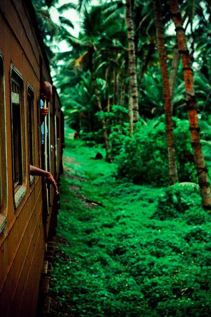 Sri Lanka >>> Love this photo ! Getting around Sri Lanka by train is fabulous and so cheap! More about this on World Travel Family Blog.