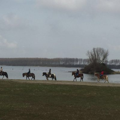 Horse trail ride in typical Dutch setting. MUST RIDE!