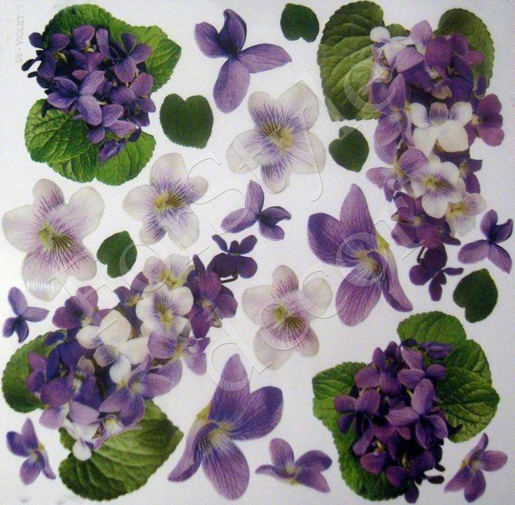 "Плёнка с рисунком для Sospeso Transparente ""Violet Kristall"" - Интернет-магазин «МЕМУАРИС»"
