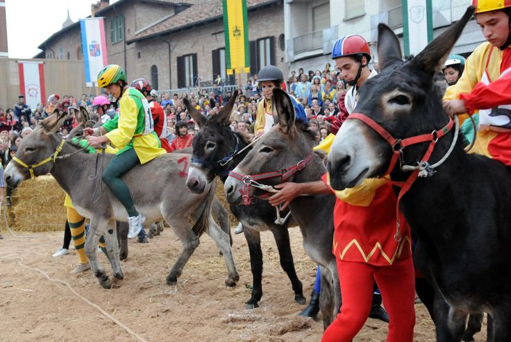 Palio Degli Asini (Donkey Race) - The First Sunday in October - Fiera Internazionale del Tartufo Bianco di Alba