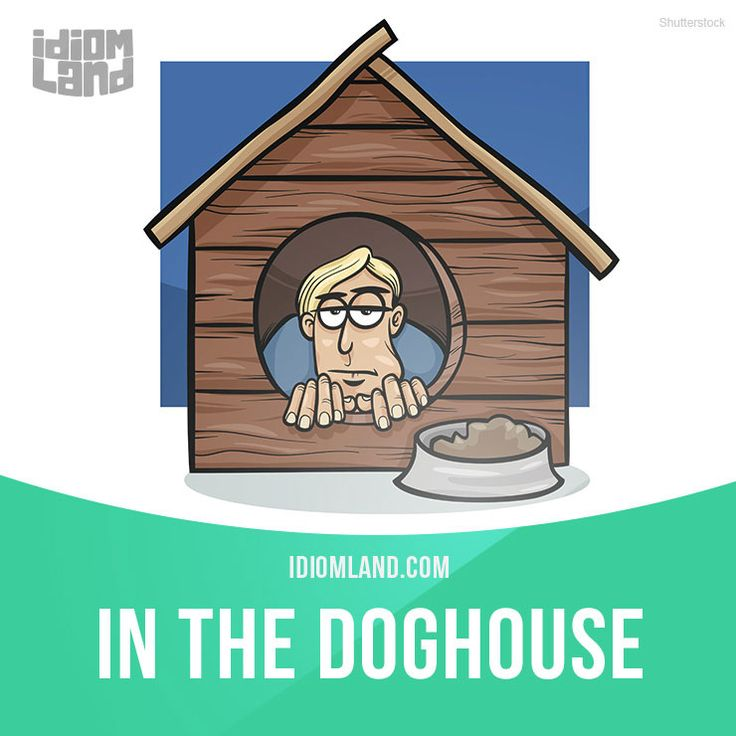 """""""In the doghouse"""" means """"in a situation in which someone is annoyed with you because of something you did"""". Example: I'm in the doghouse - I broke Sara's favourite vase this morning. Get our apps for learning English: learzing.com #idiom #idioms #saying #sayings #phrase #phrases #expression #expressions #english #englishlanguage #learnenglish #studyenglish #language #vocabulary #dictionary #grammar #efl #esl #tesl #tefl #toefl #ielts #toeic #englishlearning #vocab #wordoftheday…"""