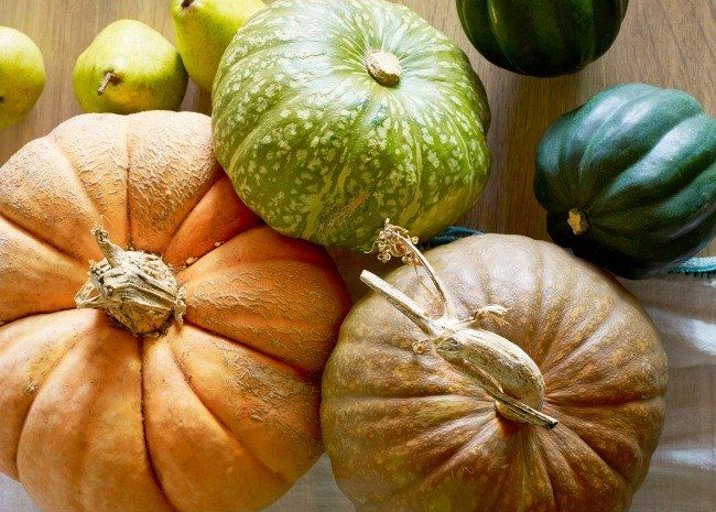 Discover the most common types of winter squash and get delicious recipes for preparing them.