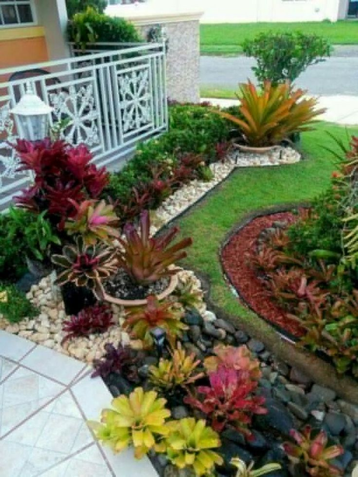 40+ Handsome Tropical Front Yard Landscape Ideas For Your ...