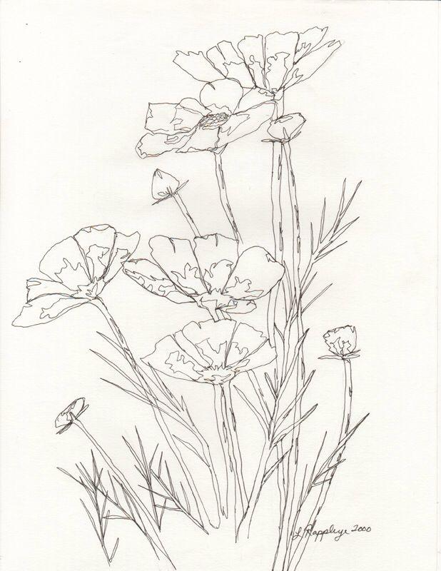 Line Drawing Technique Ethics : Best images about line drawing techniques on pinterest