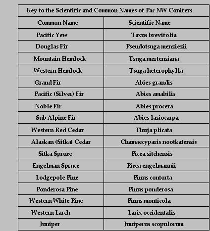 plant and scientific names Each and every recognized species on earth has been given its own scientific names scientists have given these scientific names to study these species in a proper.