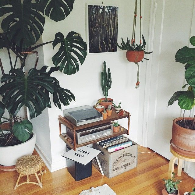 Plants, vinyl, macrame... what's not to love