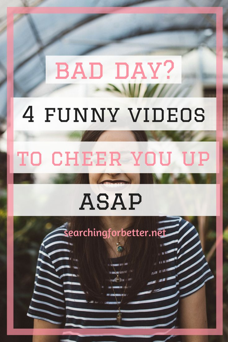 Having a bad day? These are my go to videos to cheer up and pick me up!