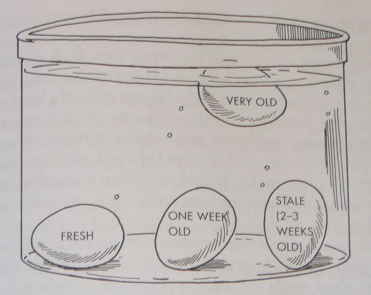 !!!!!!!!!!!!!!!!!!!!!!!!!!!!!!!!!!!!!!!!!!!!!!!!!!!!!!!!How to test if your eggs are fresh just with some water.