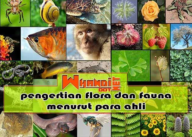 Pengertian Flora Dan Fauna Menurut Para Ahli Di 2020 Flora Hewan Mitologi