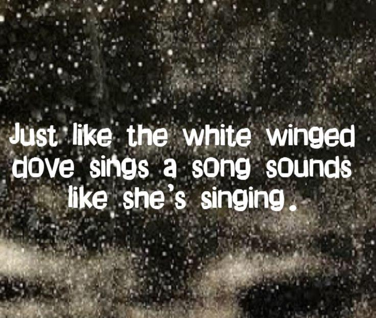 Stevie Nicks - Edge of Seventeen - song lyrics, song quotes, songs, music lyrics, music quotes,