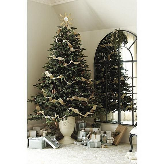 18 best small traditional christmas tree images on for Unusual small trees