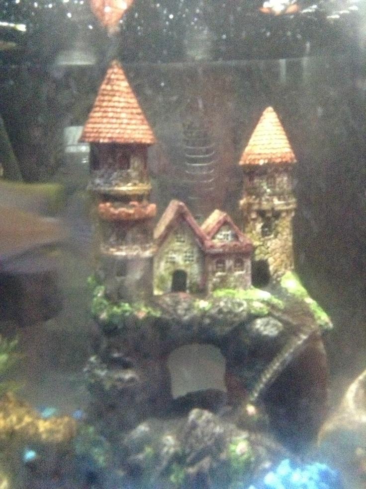 Fish tank castle fish tanks aquariums pinterest for Fish tank castle
