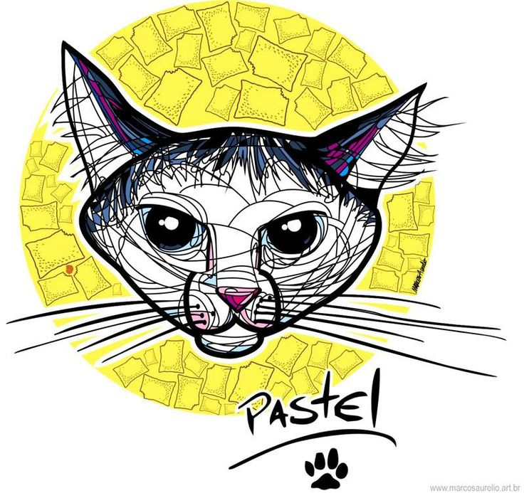 2015 - Marcos Aurelio PopArt Series: Pet Art: Another Caricature in pop art style: 2015 - Pastel, the cat