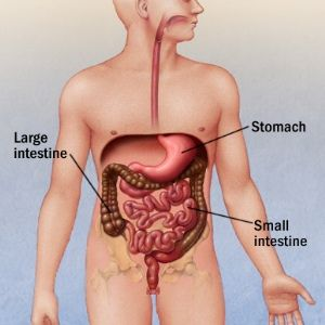 Treatment Options For Gastroenteritis