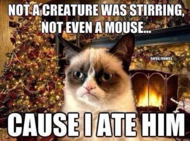christmas-grumpy-cat-not-a-creature-was-stirring-mouse