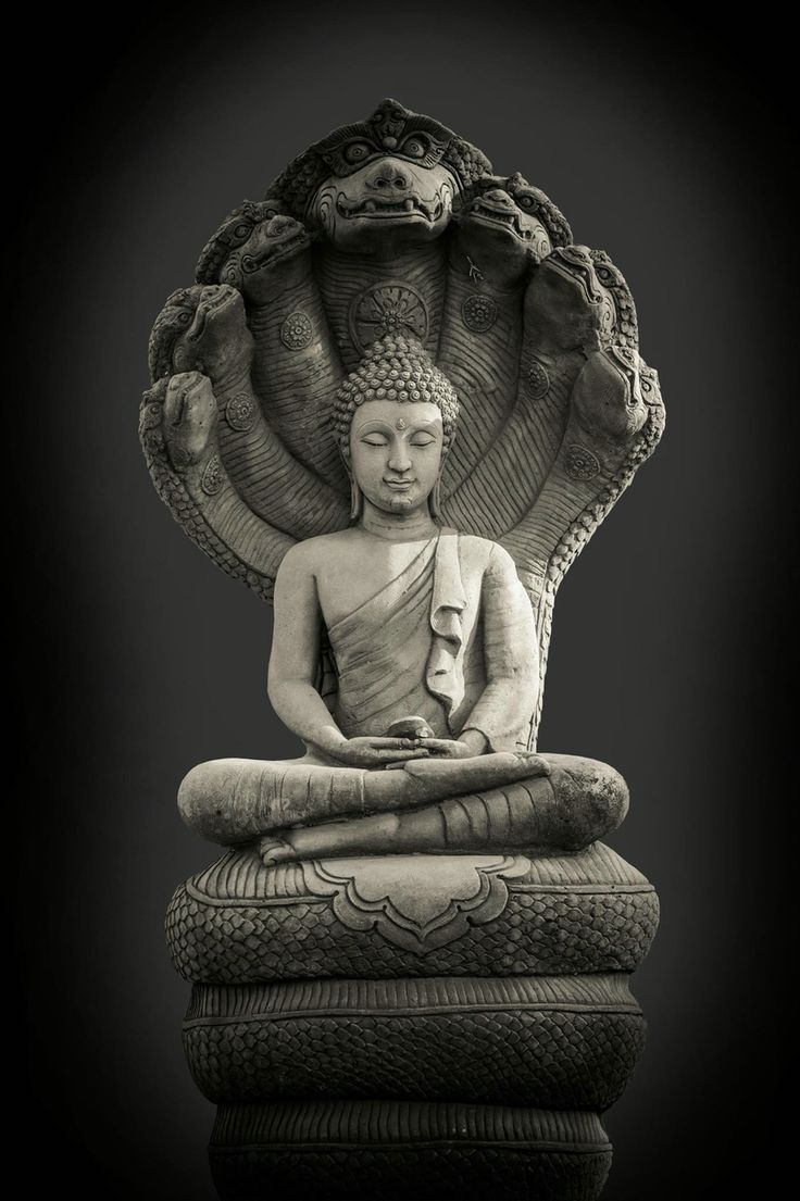 68 Best Naga Images On Pinterest Buddha Asian Art And