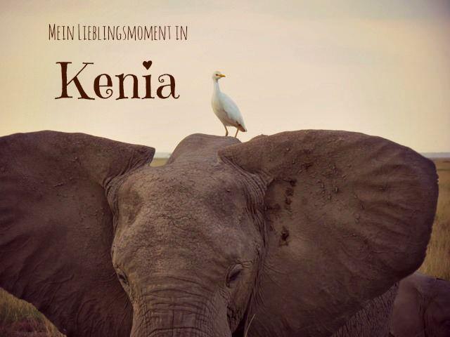 Näher geht's nicht – Bei den Elefanten vom Amboseli http://goodmorningworld.de