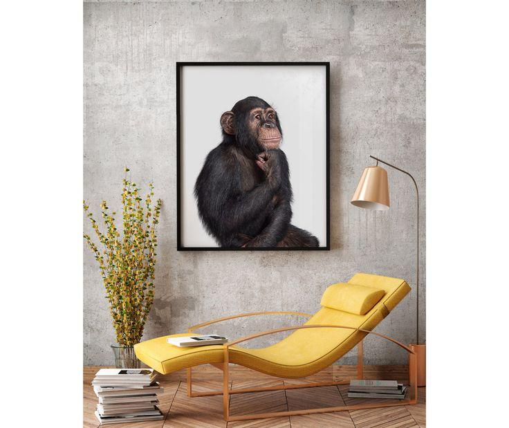 Chimpanzee Portrait No. 1