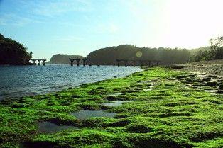 #ExploreIndonesia, The favorite beach and has special memories for me #Balekambang, beautiful beach, #Malang, #Eastjava