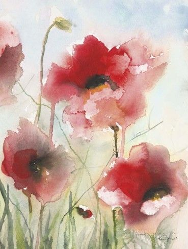 Fields Poppies 2 Posters by Karin Johannesson - AllPosters.ca