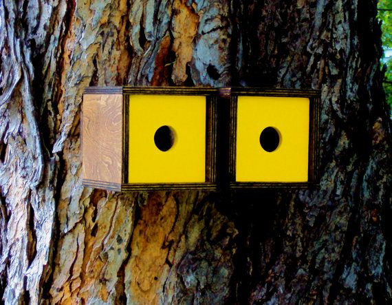 Danish Modern Birdhouse Duet in Walnut and by nathandanials- I want this for our two oak trees