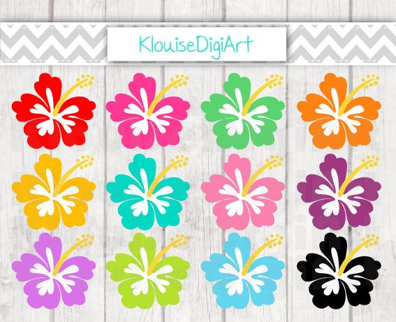 32 best digital clipart images on pinterest business cards carte tropical hibiscus flowers digital clipart by klouisedigiart colourmoves Images