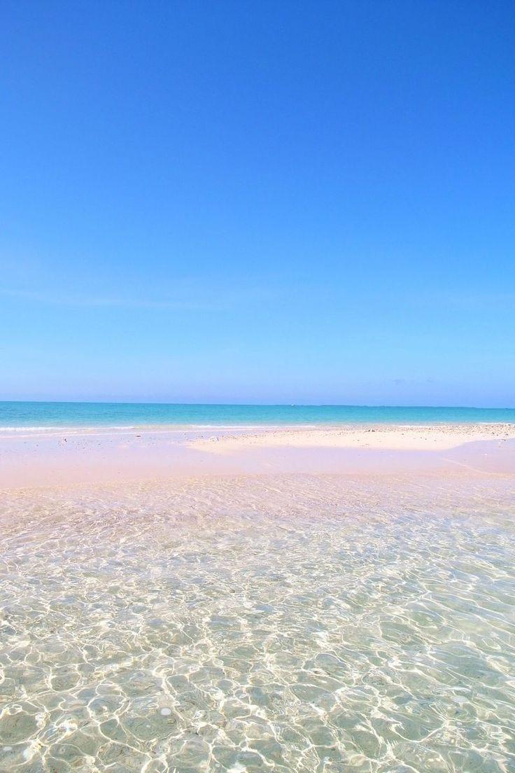 干潮の時だけ現れる真っ白な砂浜「幻の島」へ上陸