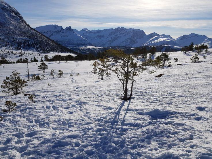 Solen skinner i det Norske fjellet i dag.The Sun is shining in the Norwegian mountains today