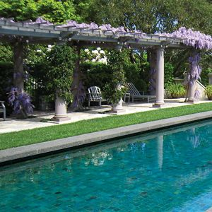 57 Best Images About Swimming Pool Trellis On Pinterest