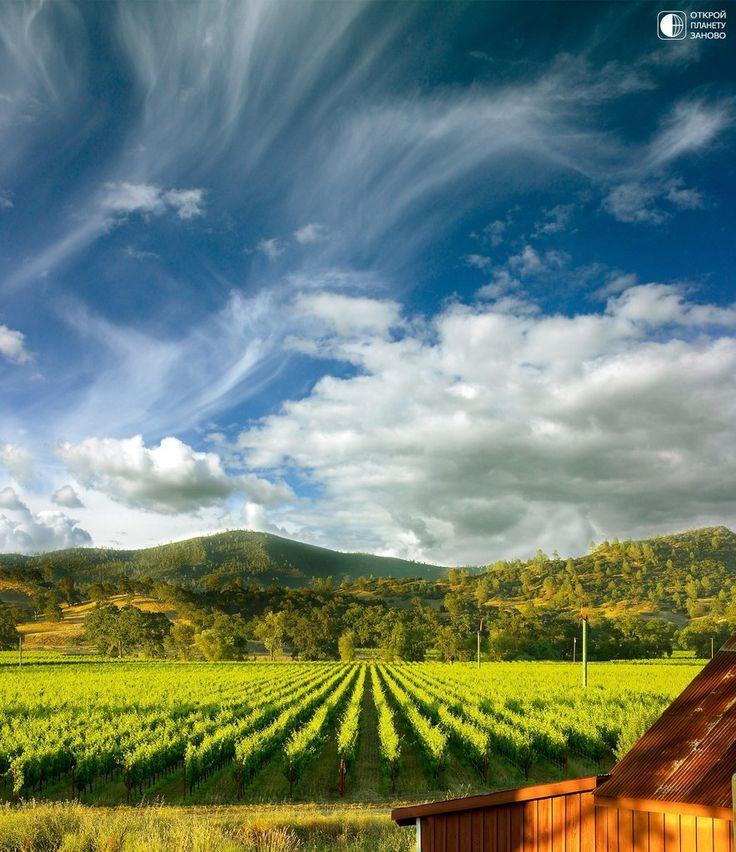 Долина Напа - Путешествуем вместе