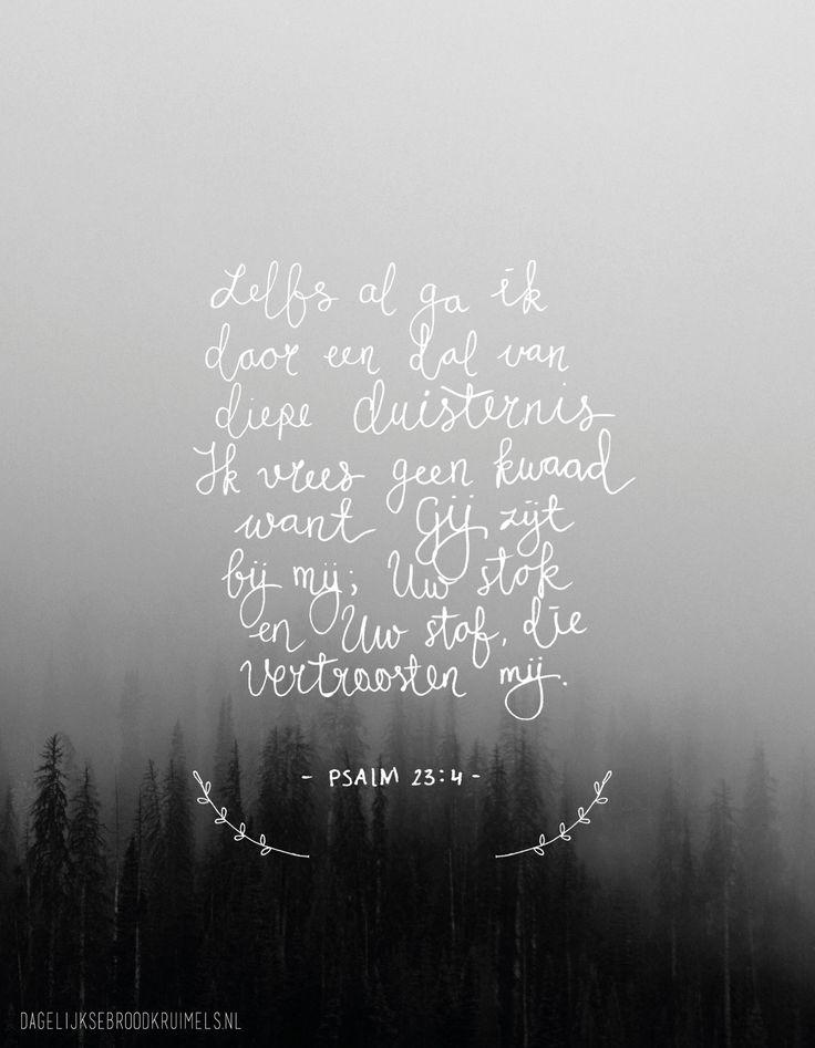 Zelfs al ga ik door een dal van diepe duisternis, ik vrees geen kwaad, want Gij zijt bij mij; Uw stok en Uw staf die vertroosten mij. Psalm 23:4  #Bijbel, #God, #Kracht, #Nabijheid, #Rust, #Verdriet, #Vertrouwen  http://www.dagelijksebroodkruimels.nl/psalm-23-4/