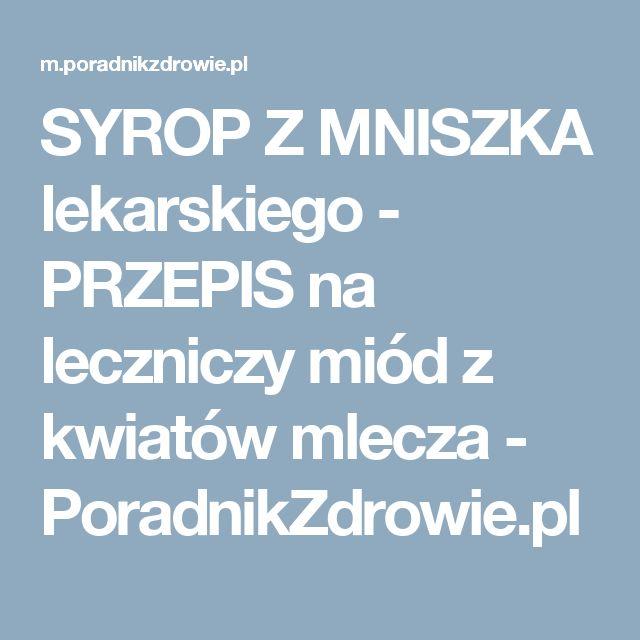 SYROP Z MNISZKA lekarskiego - PRZEPIS na leczniczy miód z kwiatów mlecza - PoradnikZdrowie.pl