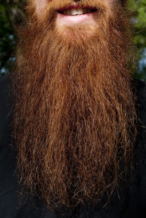 Duffy's awesome beard.