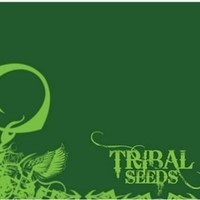 Tribal Seeds - Dawn of Time by Joel Whosoever on SoundCloud