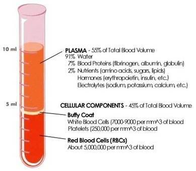 "Blood chemistry definitins: Hematocrit (HCT) The word hematocrit means ""to separate blood,"" a procedure which is followed following the blood draw through the proper use of a centrifuge. Hematocrit is the m…"