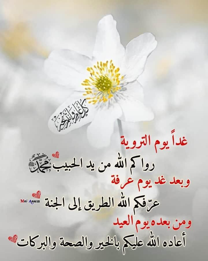 Pin By Ali Ismail On Nado In 2020 Good Morning Quotes Morning Quotes Arabic Quotes