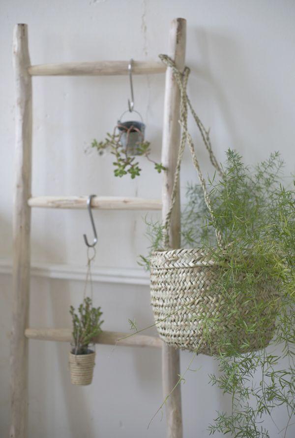 Paniers + plantes + suspendre = les petites emplettes. http://www.lespetitesemplettes.com/fr/