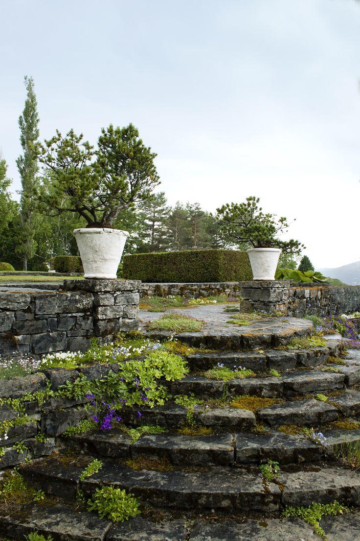 La terrasse, jardin de Quatre-vents, la Malbaie, Qc.  Tous droits réservés. Photo: Émilie Lapierre Pintal, 2015.