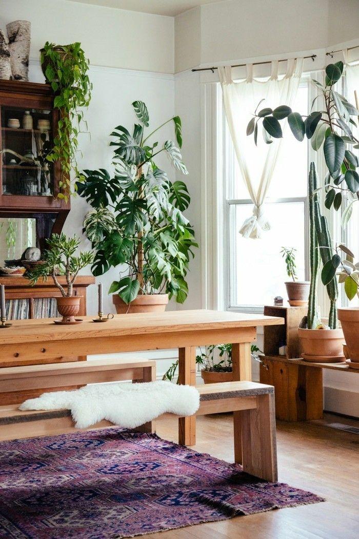 Einrichtungsideen Wohnideen Wohnzimmer Lila Teppich Pflanzen