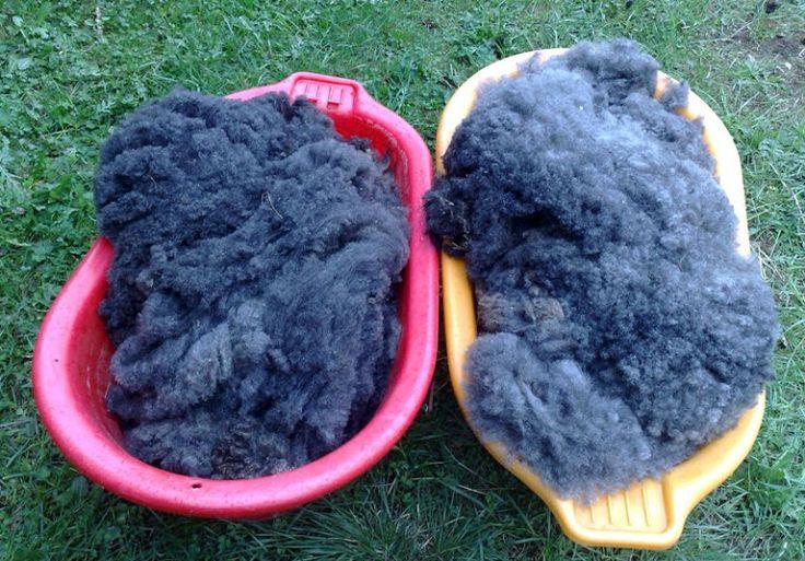 Att tvätta ull - en praktisk handledning