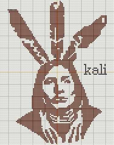 Un indien ! - Le blog de kali