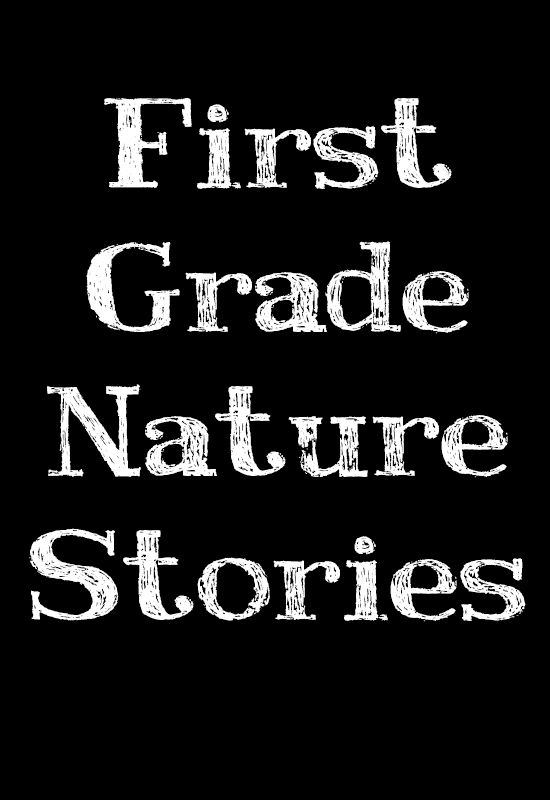 First Grade Nature Stories | From Blue Bells and Cockle Shells