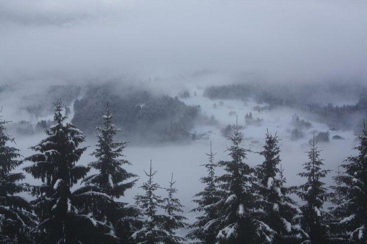 Misty Morning Outside |The Secret Chalet