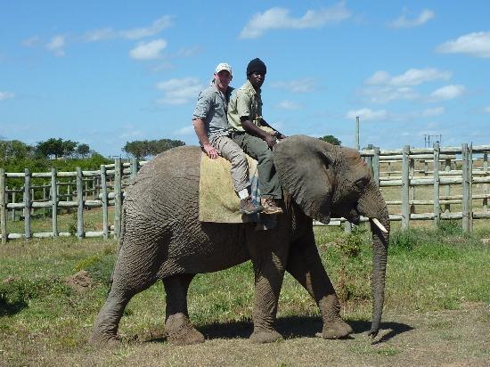 Kwantu Game Reserve Volunteer Project.  Nelson Mandela Bay.  Port Elizabeth.