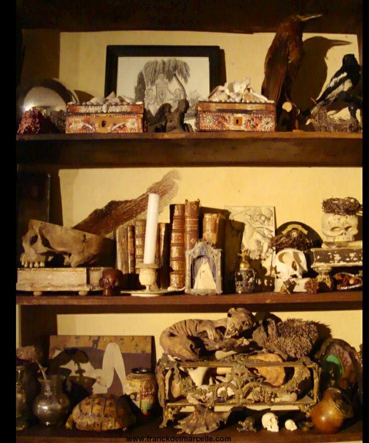 17 meilleures images propos de cabinet de curiosit s sur for Meuble cabinet de curiosite