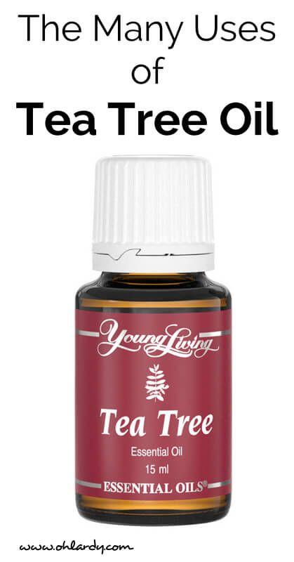 Many Uses of Tea Tree Oil - www.ohlardy.com