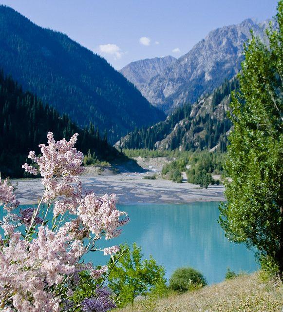 Almaty in the spring bloom #travel  #love