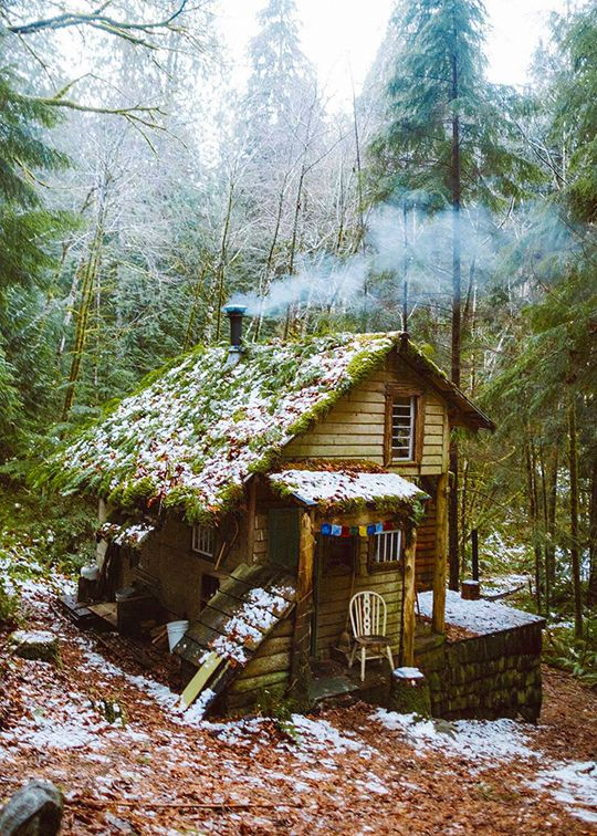 Cabin with a green roof. I love the prayer flags on the porch.