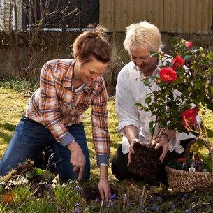 Zeit statt Zeug verschenken - Blumen pflanzen statt Blumenstrauß