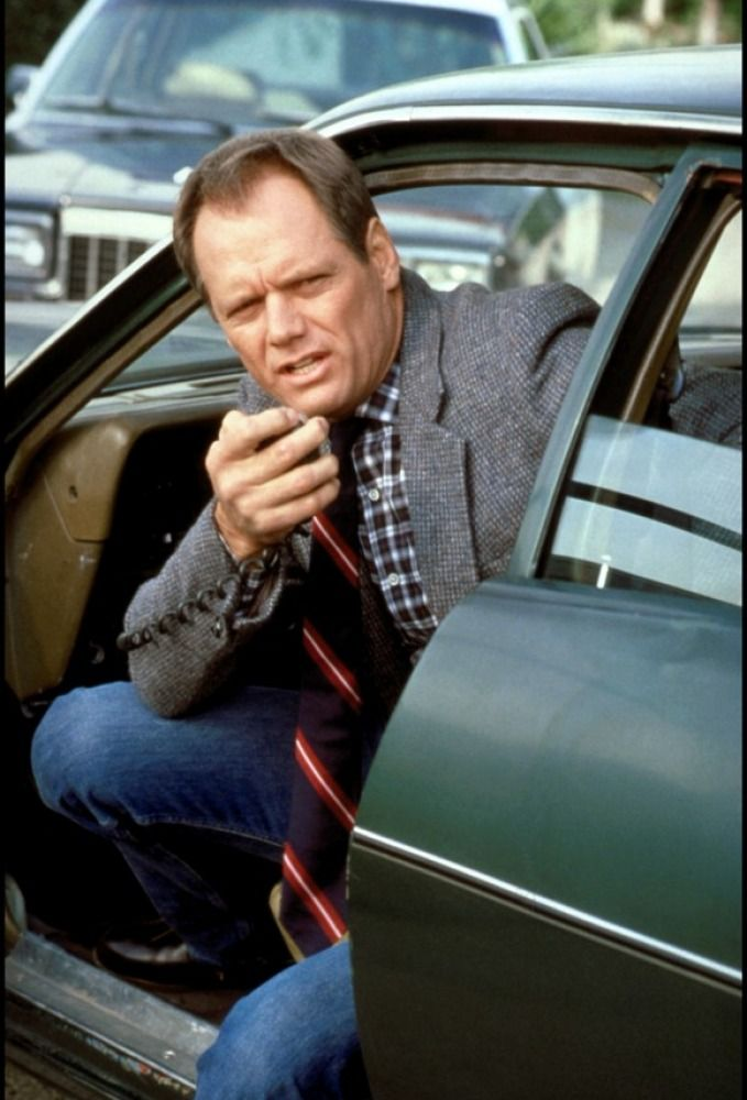 Fred Dryer as Rick Hunter from the Hunter TV series. I use to watch this with my Aunt, she loved this show!